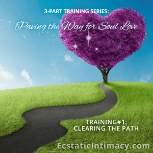 Paving the Way to Soul Love Training #1